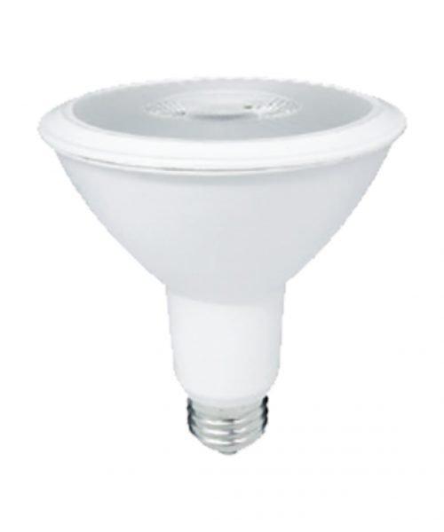 PAR30 LED